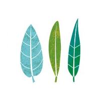 Environment Education Victoria