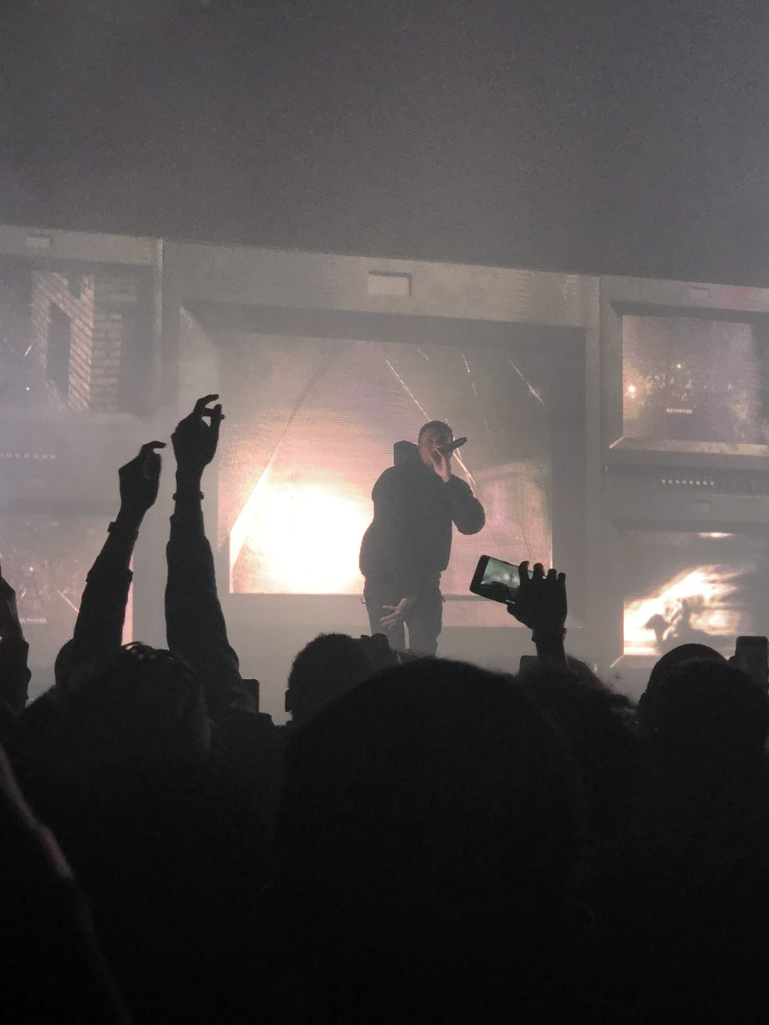 Concert Review: Vince Staples with PNTHN and Buddy