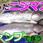 fishing&ソロキャンプ~ニジマスと野草料理~①
