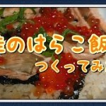 料理 簡単 宮城県郷土料理 はらこ飯 つくってみたよ [うるち]