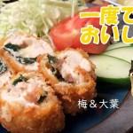 2種のササミカツ【フライパンで簡単!】