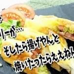 簡単焼き春巻き / レシピ動画