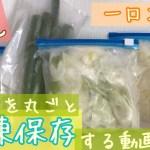 【一人暮らし】【一口コンロ】長ネギをまるごと冷凍保存する動画