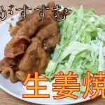 【料理初心者】生姜焼きの作り方・タレがうまい!【一人暮らしの料理】