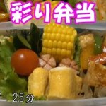 【お弁当】鶏肉とパプリカのオイスターソース炒め 塩焼きそば 卵焼き ウインナー キュウリの漬物【Obento】