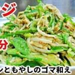 【簡単料理】低糖質レシピ!ピーマンのゴマ和え