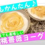 【かんたん料理レシピ】桃薔薇ヨーグルト【60秒お料理動画】