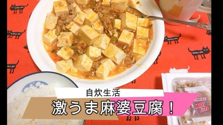 【一人暮らし男子の料理動画】麻婆豆腐