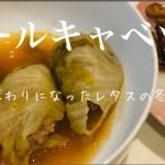 日常vlog【料理】ロールキャベツ アラフォー男映えない料理