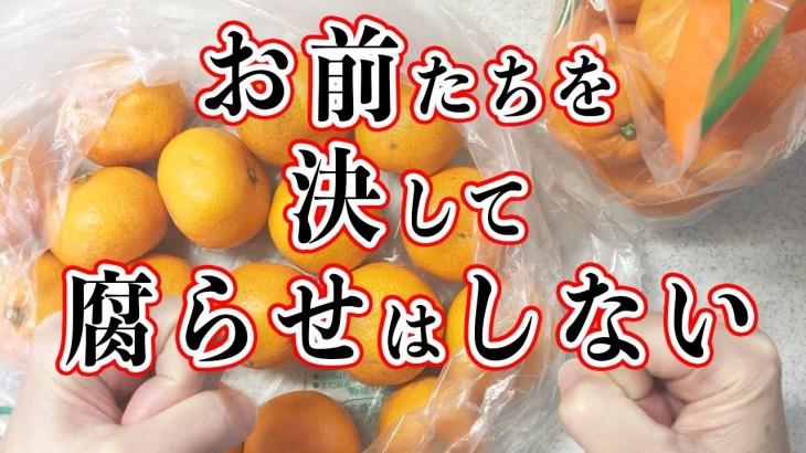 【簡単料理】大量みかんを消費せよ!!むいて、切って、かけるだけ!あっという間の箸休めレシピ