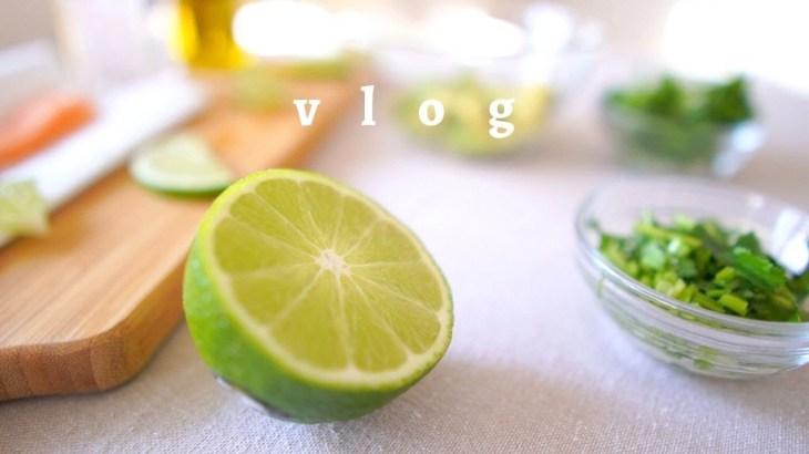 【vlog】一人暮らしのヘルシー料理|サーモン&アボカド・パクチー 丼|ダイエットレシピ|vlog #4