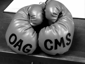 OAG-CMS Boxing Gloves for Bill Holland