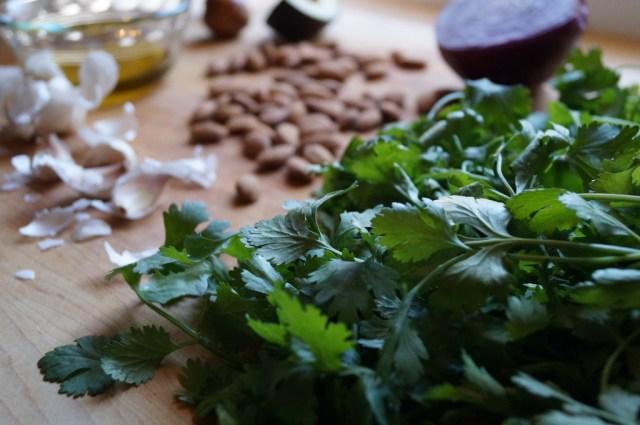 Cilantro Almond Pesto, Ingredients