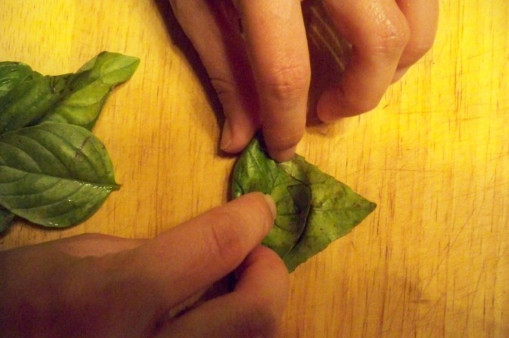 Roll the leaves up starting from the stems, don't crush them to tightly.