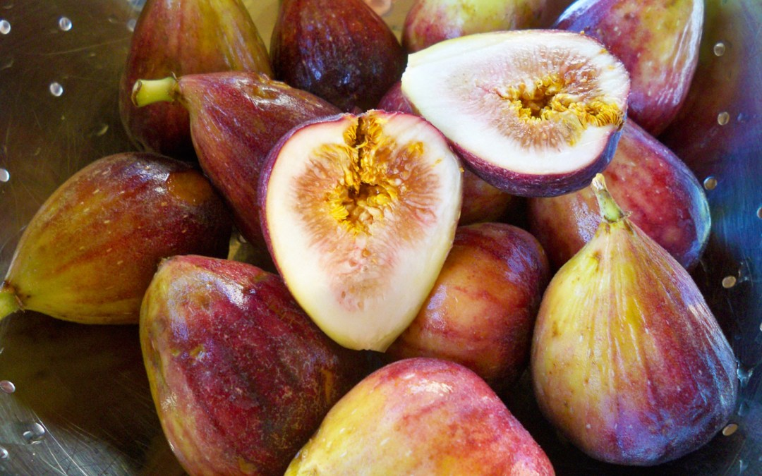 Prosciutto Wrapped Figs