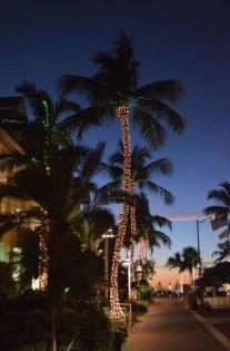FLORIDE6