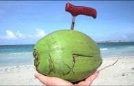 5 Best Coconut Opener – 1