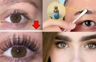 How To Grow Long – Thicker Eyelashes & Eyebrows In a Week – How To Grow Eye Lashes