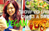 How To Live On $3 a Day – VEGAN EDITION – part – 1 – Cheap Lazy Vegan