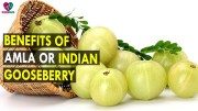 Benefits of Amla or Indian Gooseberry – Health Sutra – Best Health Tips