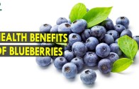 Health Benefits of Blueberries – Health Sutra – Best Health Tips