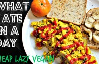 WHAT I ATE IN A DAY – 15 – VEGAN – CHEAP – EASY – Cheap Lazy Vegan