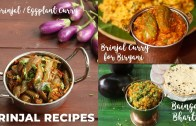 Brinjal Recipes – Baingan Bharta – Brinjal Curry – Brinjal Curry For Biryani