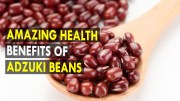 Amazing health benefits of adzuki beans – Health Sutra – Best Health Tips