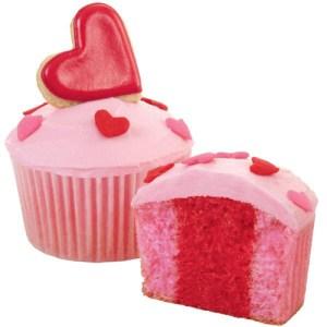 2105-7783_wilton_twotone_cupcake_x