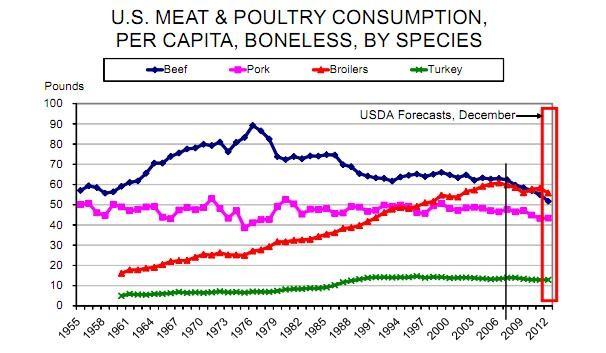 meat consumption