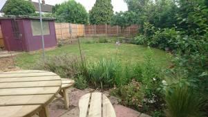 garden_during2