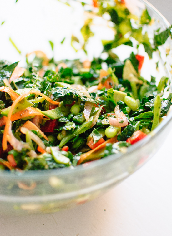 Healthy chopped kale salad with Asian flavors - cookieandkate.com