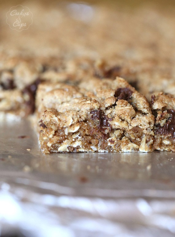 Salty Chocolate Chip Oat Bars