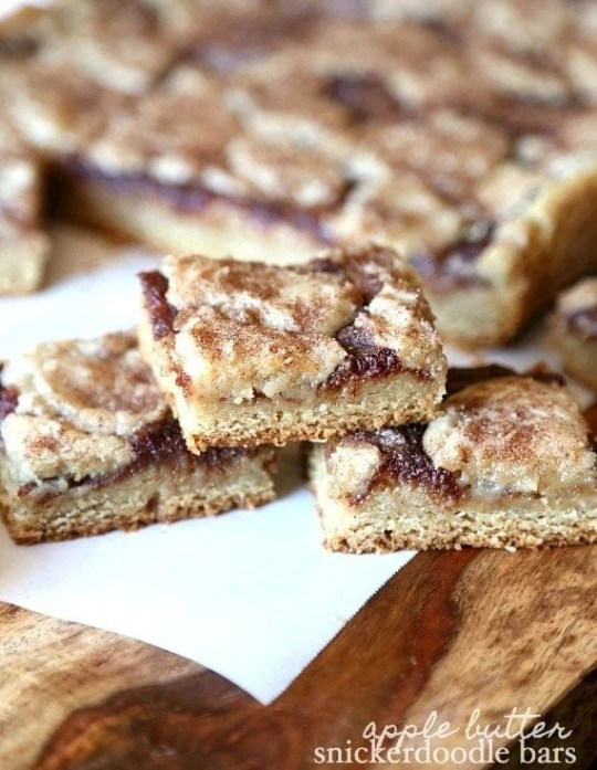 Apple Butter SNickerdoodle Bars...so soft and cinnamony! These are so yummy!