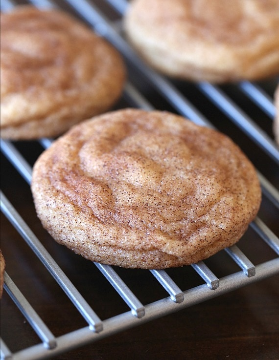 The Perfect Snickerdoodle Cookie recipe EVER! These cookies are soft and buttery, loaded with cinnamon and can be made QUICK! No chilling the dough necessary!