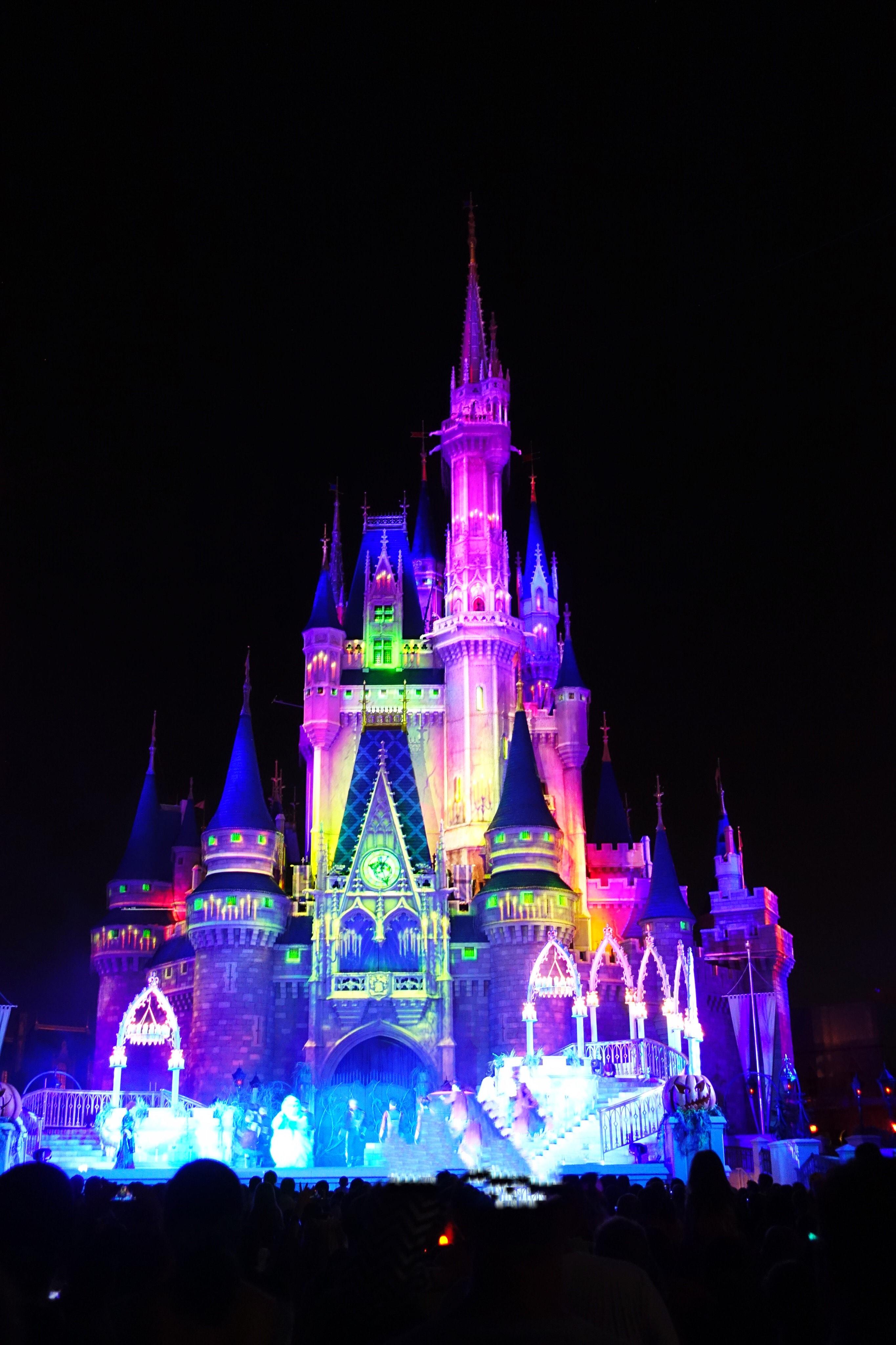 Magic Kingdom Castle Disney World