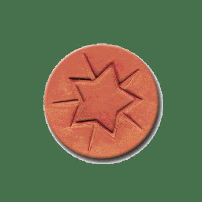 CR 285 Rycraft Star Bright Craft Stamp   CookieStamp.com