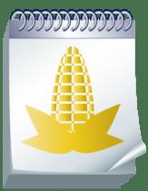 Hebrew English Grain Chart