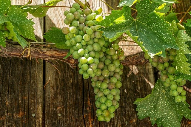wine tips that are easy to understand below - Wine Tips That Are Easy To Understand Below