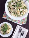 cheese tortellini recipe
