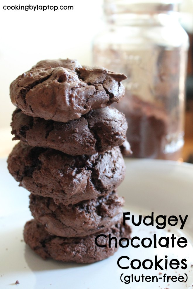 Gluten Free Fudgy Chocolate Cookies