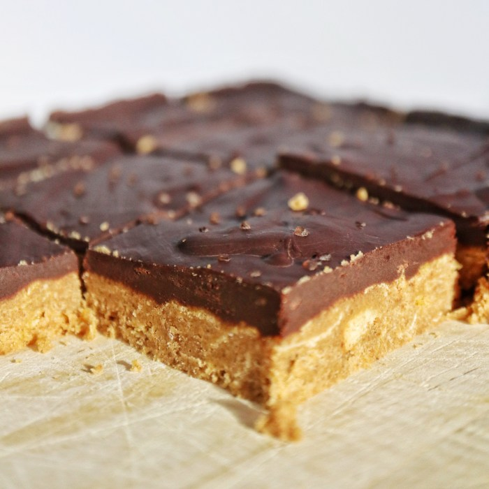 Vegan Gluten Free No Bake Peanut Butter Bars