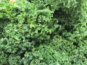 Kale - CookingCoOp.com