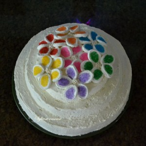 Tier Cake Decorated with Marshmallow Flowers