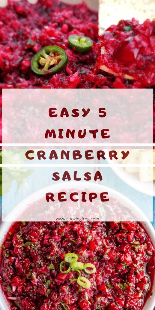 Easy Cranberry Salsa Recipe