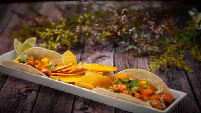 Shrimp-Tacos-Spiced-Ulu-Chips-Taylor-Kellerman-Kualoa-Ranch