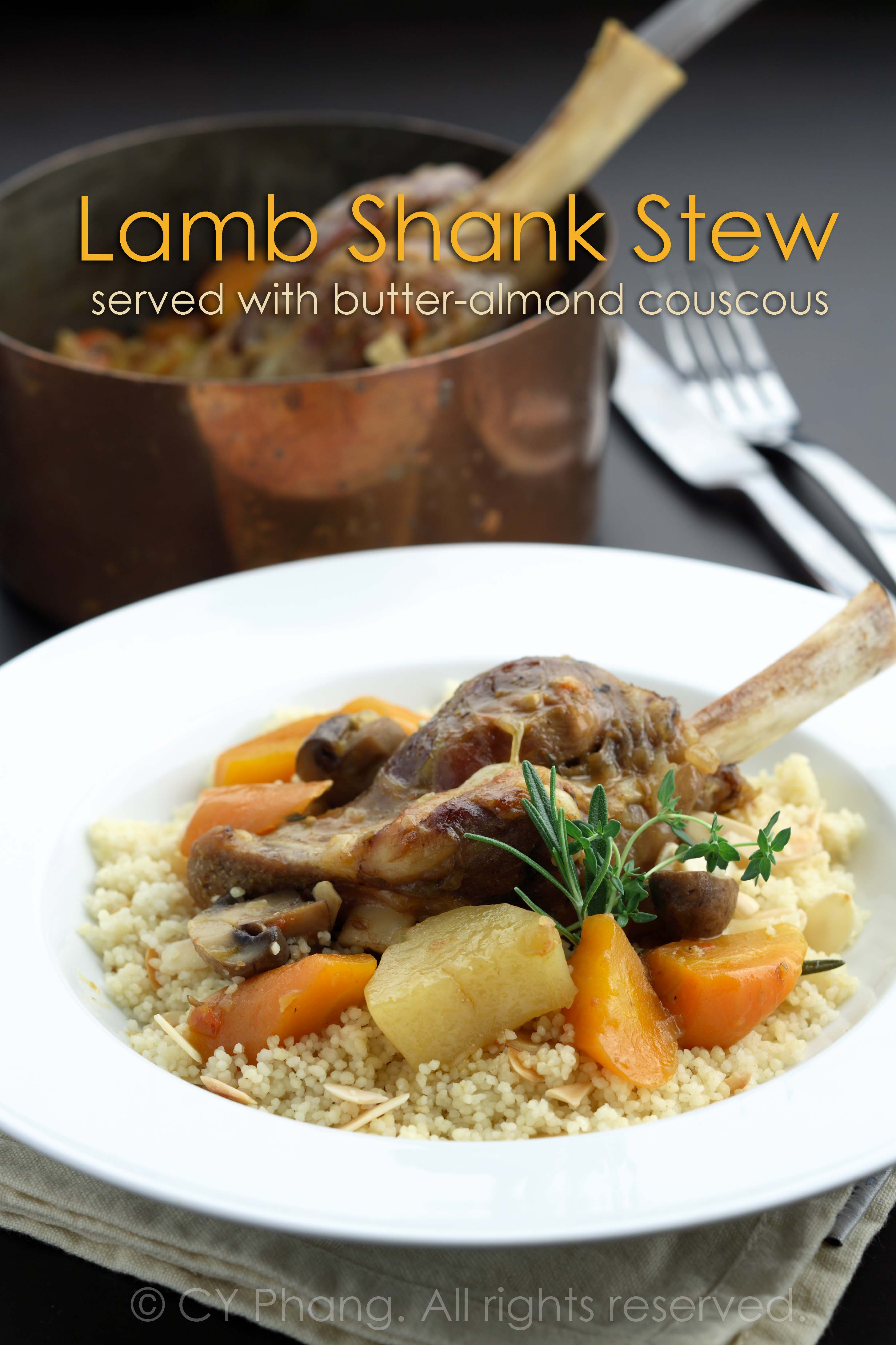 Moroccan lamb shank stew with vegetables-IMG_6457-custom copy