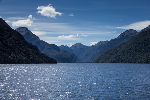 Doubtful Sound with Real Journeys NZ Cooking in Tongues