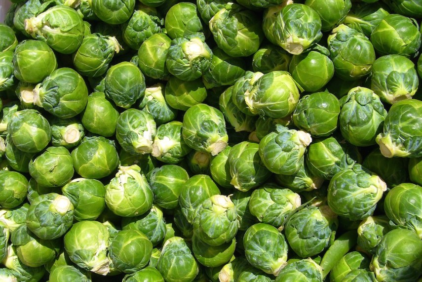 brussel-sprouts-2014
