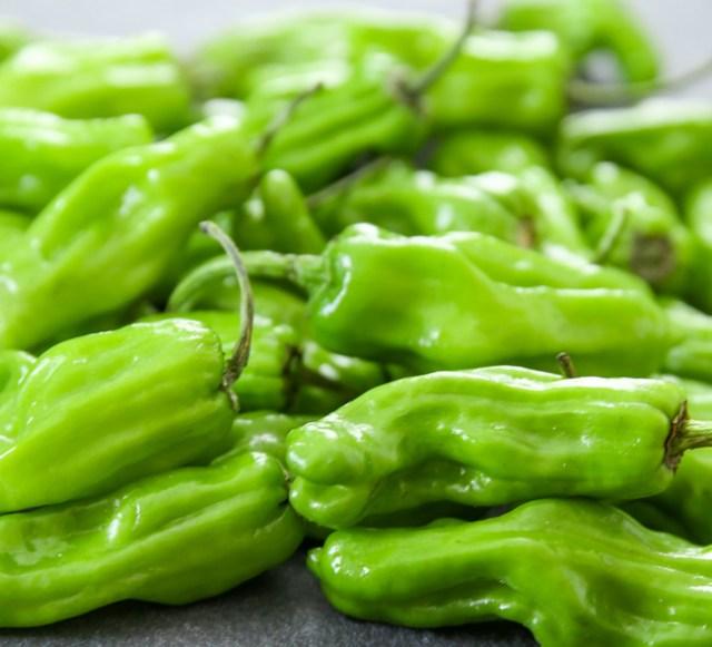 shishito-peppers-28